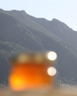 miel bio, miel 30g, miel de montagne bio, miel de montagne naturel