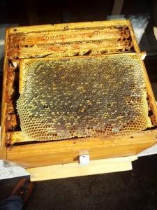 cire d'abeille, cire naturelle, cire d'abeille naturelle